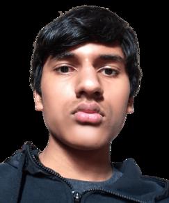 picture of spellers number 104, Paarth Tara